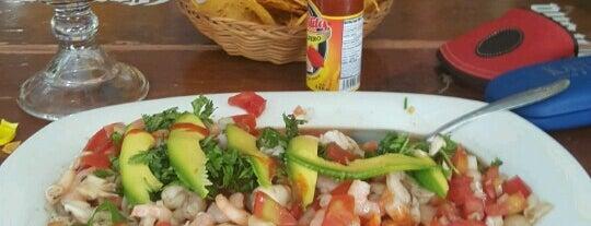 Sol y Mar is one of Progreso, Chichulub Yuc.