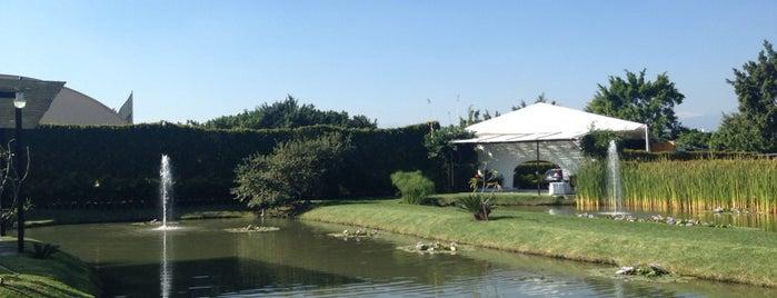 Jardin Santa Barbara is one of สถานที่ที่ Eu ถูกใจ.