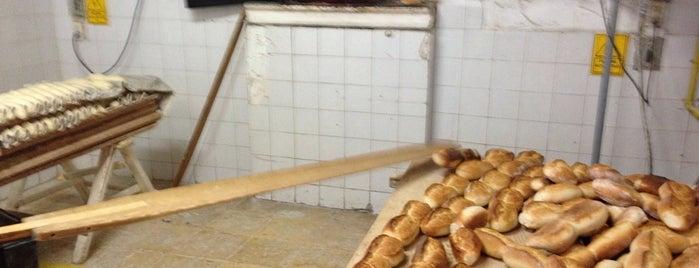 Panadería La Bufa is one of Posti che sono piaciuti a Salvador.