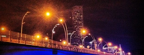Esplanade Bridge is one of Singapore Leisure.