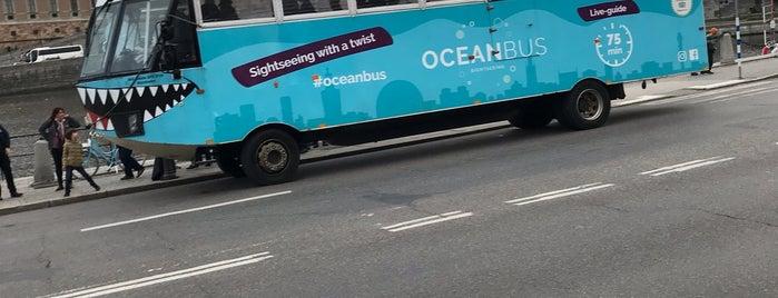 Ocean Bus is one of Posti che sono piaciuti a Alban.