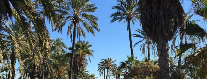 Parque El Palmeral is one of Paolaさんのお気に入りスポット.