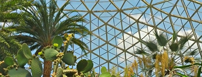 Mitchell Park Horticultural Conservatory (The Domes) is one of Loriさんのお気に入りスポット.