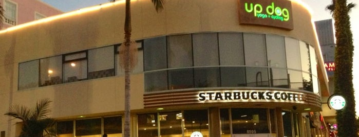 Starbucks is one of Lugares favoritos de Samah.