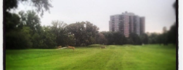Humber Valley Golf Course is one of Things to Do in Toronto.