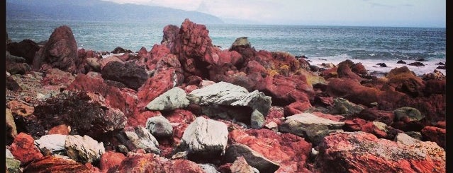 Red Rocks Seal Colony is one of Новая Зеландия.