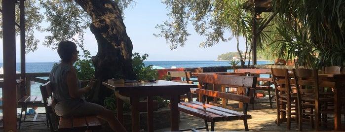 Taverna Sikia is one of Locais curtidos por Barbaros.