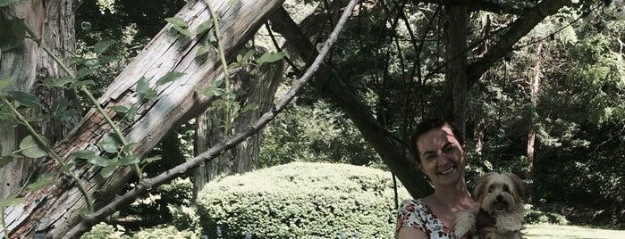 Bailey Arboretum is one of Lugares guardados de Sarah.