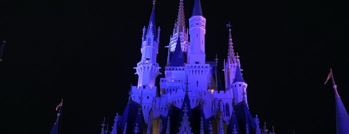 Magic Kingdom® Park is one of Locais curtidos por Eric.