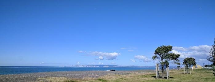 Marine Parade Foreshore Reserve is one of Locais curtidos por Simone.