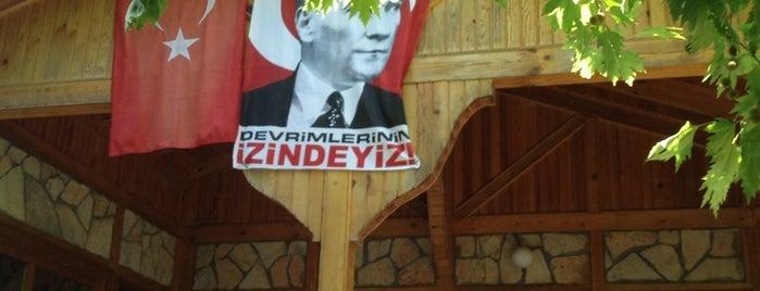 İnkaya Piknik Alanı is one of Lieux qui ont plu à Sedat.