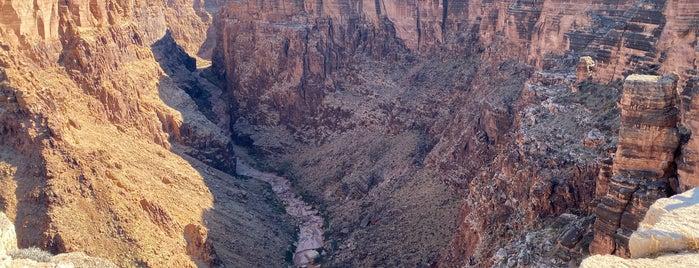 Little Colorado Scenic Lookout is one of Ian : понравившиеся места.