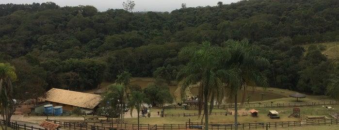 Parque Della Vitória is one of Posti che sono piaciuti a Menossi,.