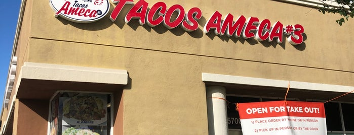 Tacos Ameca #3 is one of food.