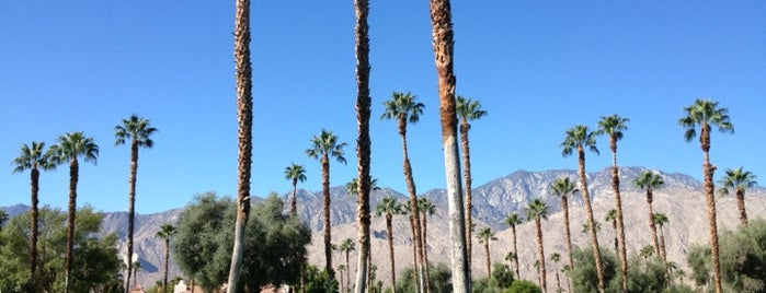 Mesquite Golf and Country Club is one of Palm Springs.