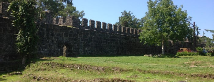 Gonio Fortress | გონიოს ციხე is one of Грузия.
