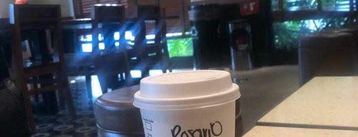 Starbucks is one of Ricardo 님이 좋아한 장소.