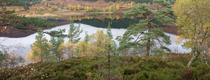 Glen Affric is one of Scotland.
