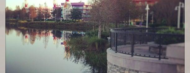 Hourglass Lake is one of Walt Disney World.