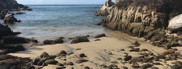 Playa Secreta del Hotel Las Brisas is one of Lugares favoritos de Fernando.
