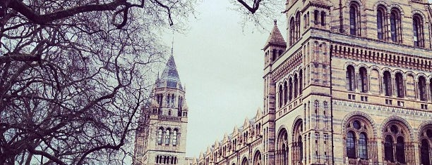 Natural History Museum is one of London things to do.