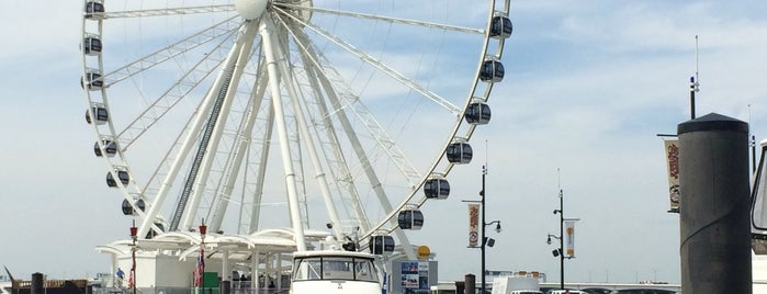 The Capital Wheel at the National Harbor is one of Posti che sono piaciuti a Jen.