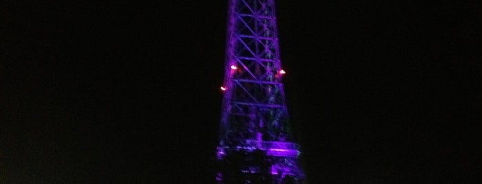Eiffel Tower - Kings Dominion is one of Lieux qui ont plu à Anthony.