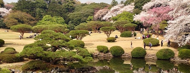 Shinjuku Gyoen is one of Tochickyo.