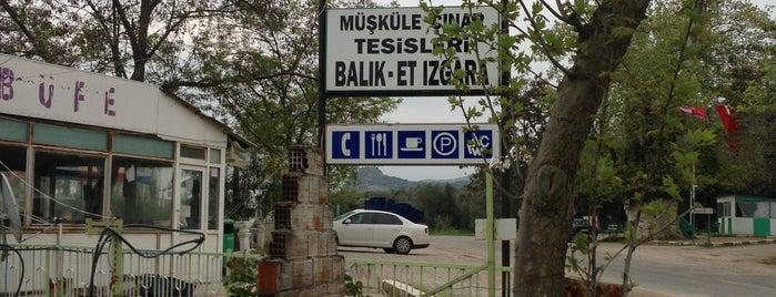 Müşküle Çınar Tesisleri is one of Onur'un Kaydettiği Mekanlar.