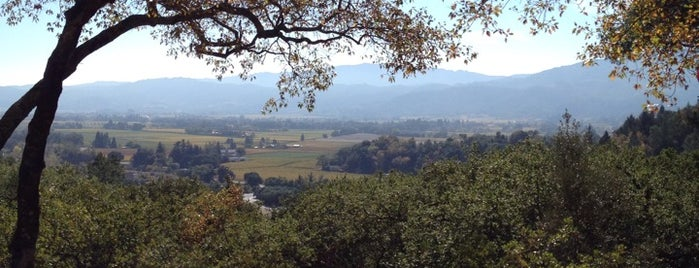 Rutherford Hill Winery is one of california wine country.