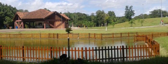 Parque Romeu Benício Wolf is one of Orte, die Marcelo gefallen.