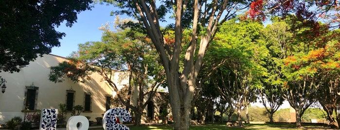 Hacienda Labor De Rivera is one of Posti che sono piaciuti a Guillermo.