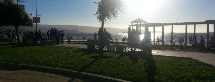 Costanera de Viña del Mar is one of Tempat yang Disukai Javier.