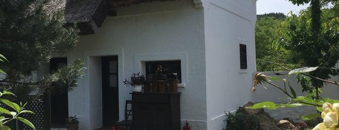 Pajta Galéria is one of Orte, die Thomas gefallen.