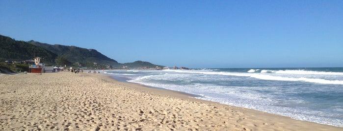 Praia Mole is one of Florianópolis.