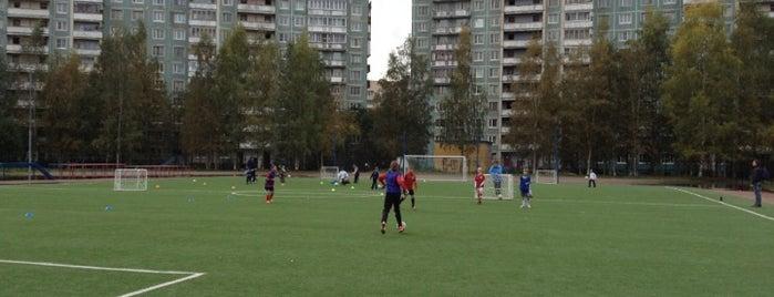 Филиал Академии ФК Зенит (Зенит-Выборгский) is one of Zenit Football Club 님이 저장한 장소.