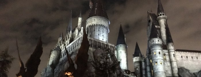 The Wizarding World of Harry Potter is one of Japan. Places.