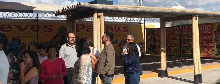 Nieves Pachus is one of Posti che sono piaciuti a Maryhel.