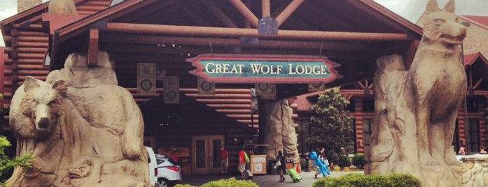 Great Wolf Lodge is one of DC Museum.