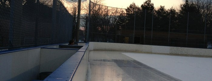 Kew Beach Rink is one of Chris's Liked Places.
