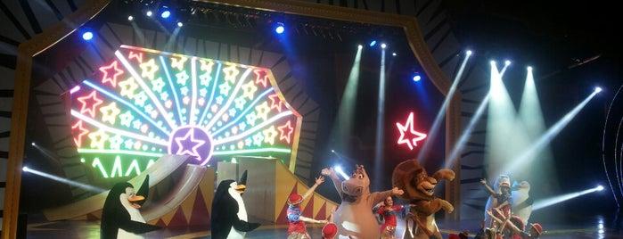 Madagascar Circus Show is one of Beto Carrero World.