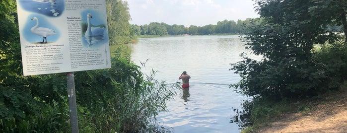 Neuer See is one of Testen: Ausflüge.