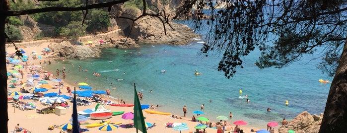 Cala Sa Forcanera is one of Playas de España: Cataluña.