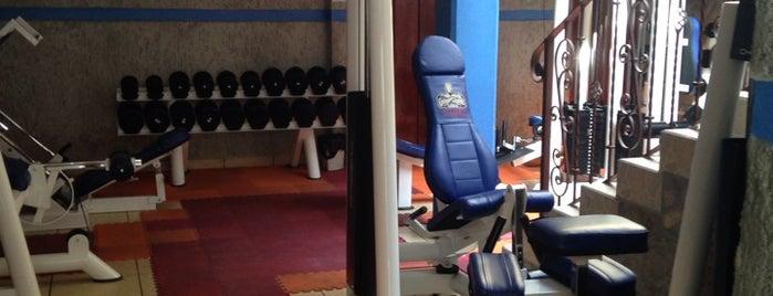 Toretto´s Gym is one of Tempat yang Disukai Whitey.