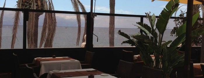 La Terrazza del Mare is one of Canary Islands.