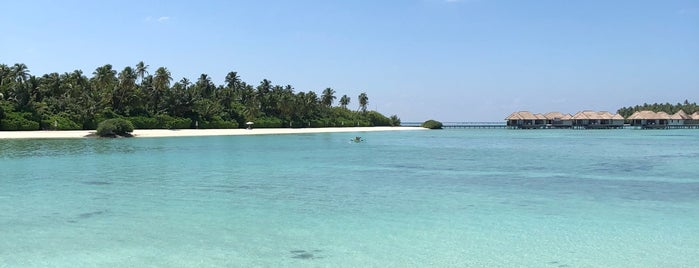 Maalifushi by COMO is one of WORLDS BEST HOTELS..