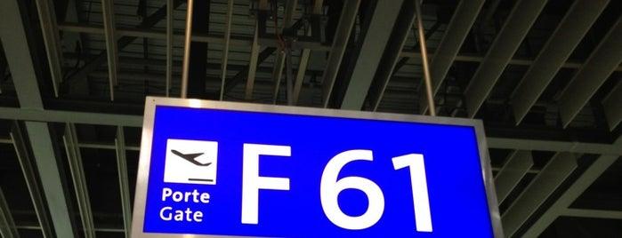 Gate F61 is one of Geneva (GVA) airport venues.