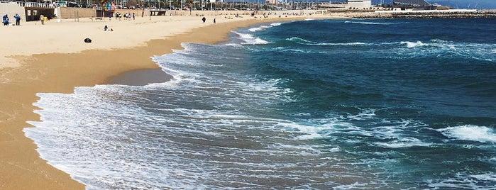 Platja de la Nova Mar Bella is one of Europe 16.
