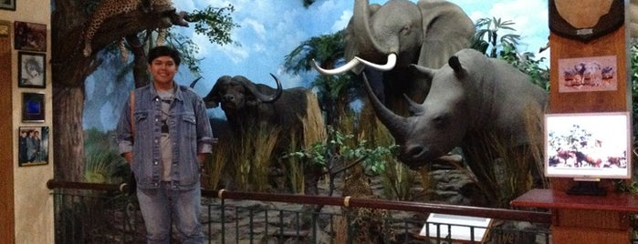 Rahmat International Wildlife Museum & Gallery is one of Museum In Indonesia.