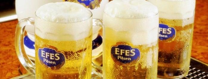 Şişman Efes Pub is one of Nightlife In Eastern Black Sea Section.